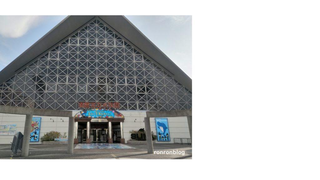 関西遊びスポット・神戸市立須磨水族館【スマスイ】