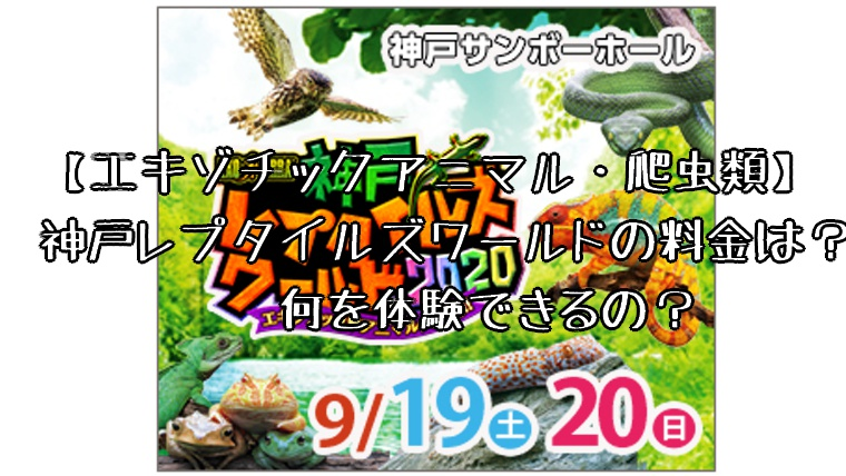 【エキゾチックアニマル・爬虫類】神戸レプタイルズワールドの料金は?何を体験できるの?